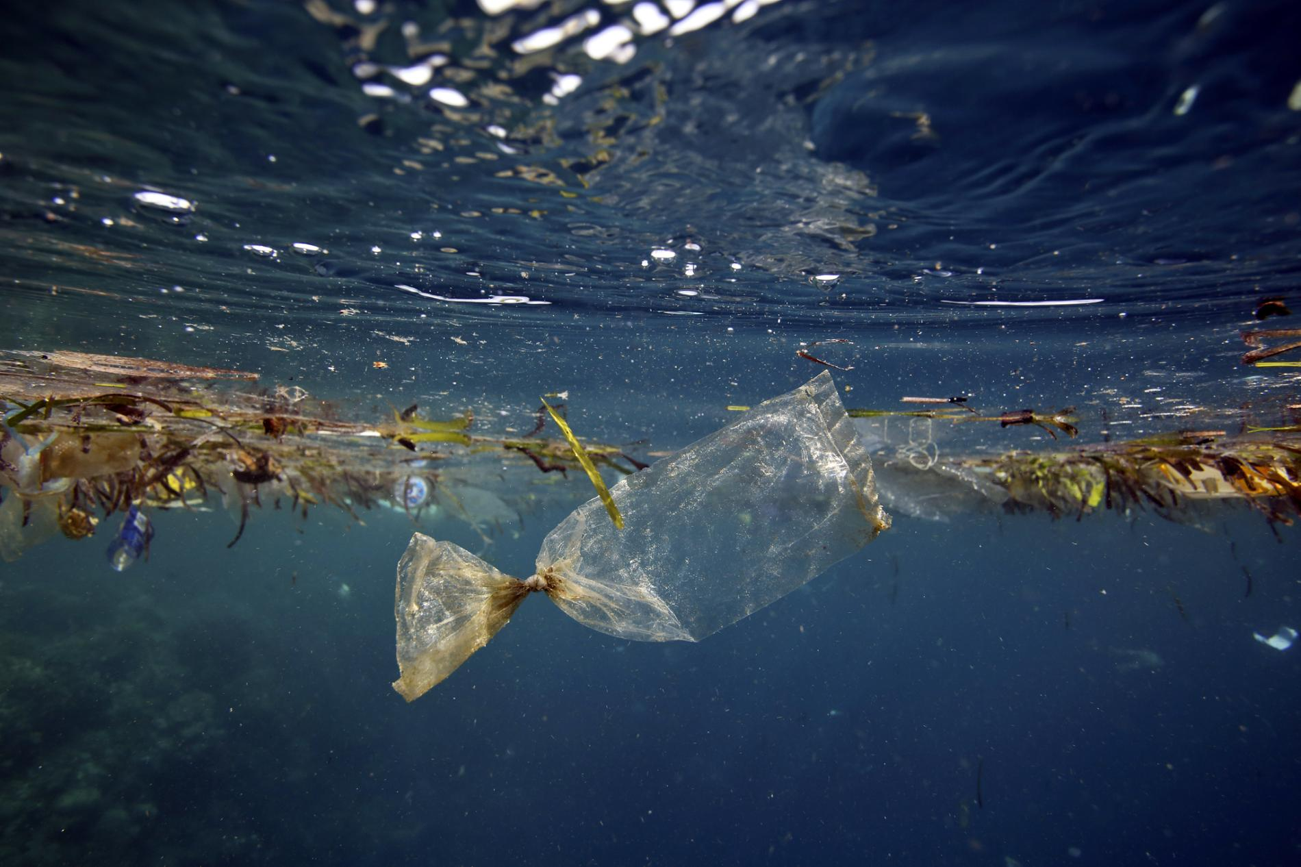 Plastic Floating in the Ocean - Paul Kennedy - GettyImages