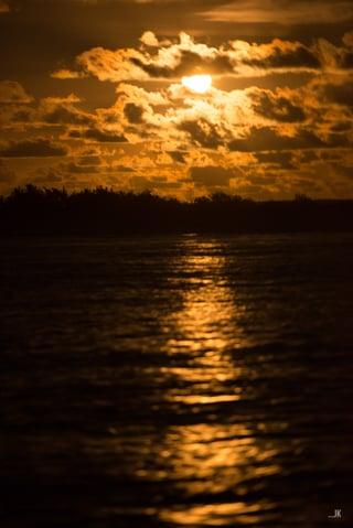 night-sail_JK82259.jpg